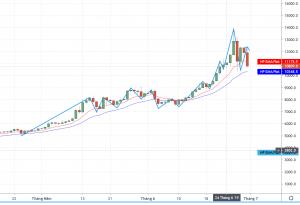 Minh họa về Trader thuần túy, họ cố gắng bắt thật nhiều con sóng trong các diễn biến thị trường